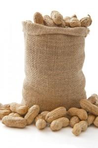 Risques allergènes et OGM - formation hygiène obligatoire